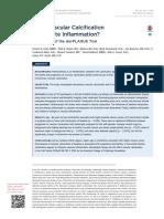 Calcificación Vascular - 2016 - Inflamación Acelerada - Tto