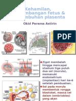Kehamilan, perkemb placenta.pptx