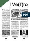 Il Ve(T)ro - 38.pdf