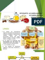 LIPIDOS EXPO.pptx