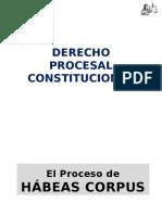 Derecho Procedimental Constitucional