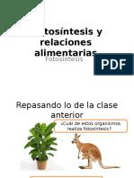 Fotosintesis 1