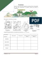 3º Basico - Naturaleza - Anexo Ecosistema