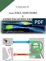 UNIDAD IV. Sist Nervioso y Comunic. Neuronal.