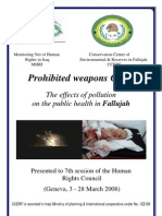 Fallujah's Prohibted Weapons Crisis (2008)