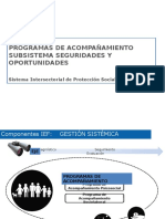 Programas de Acompañamiento IEF
