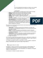 TEMA 1 Lengua.docx