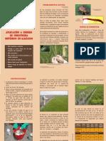 06 Aplicacion a Chorro de Insecticida Sistemico en Almacigo de Arroz