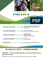 Seminário P1MC e P1+2