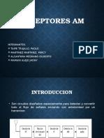 Diapositiva Receptores Am.