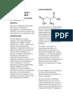 Acido Aspartico y Acido Glutamico