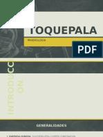 Toquepala Copia