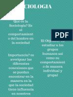 postersaraorellana201405703sociologia