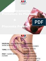 DPP E PP.pptx