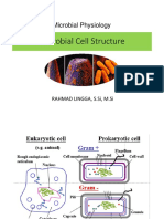 Fismik 2. Microbial Cell Structure