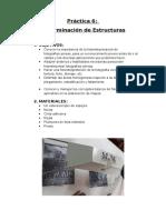 Nro.06 Determinacion de Estructuras