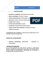 Informe Psicoterapia Familiar.