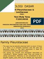 MIKOLOGI  DASAR pleurotus.pptx
