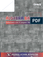 ADALID_DIEZ_DE_U_CLARAMARTHA_algebra_Basica_Soluciones_con_e (1).pdf