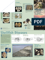 DiseasesGuide.pdf