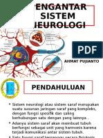 Pengantar Sistem Neuro