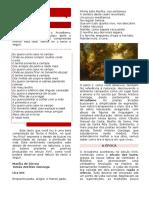 LITERATURA BRASILEIRA - Gersonita (1).docx