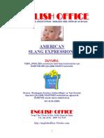 AmericanSlang.pdf