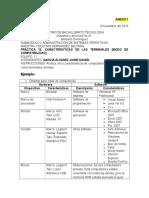 Anexo I Caracteristicas de Las Terminales Jaime