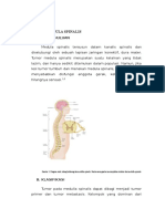 Tumor Med Spine