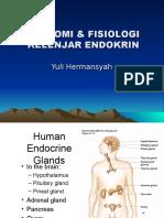 anatomi & Fisiologi Kel Endokrin
