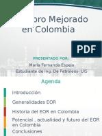EOR EN COLOMBIA.pptx