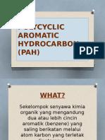 Polycyclic Aromatic Hydrocarbon