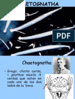 chagtonatha