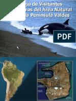 Manejo de Visitantes Península Valdés Felgueras