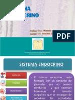 M2 4 Sistema Endocrino