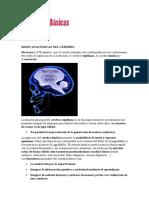 Emociones y Neurociencias