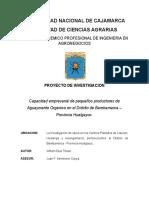 Proyecto de Tesis-Aguaymanto
