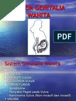 Kelainan Sistem Genitalia Wanita