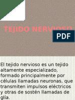 2.2.7.3 Tejido nervioso.docx (1)