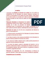 Cuestionario 1er Corte Derecho Procesal Penal