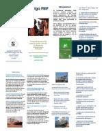 Folleto_Codigo_PBIP.pdf