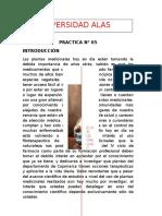 PRACTICA N° 05 - FARMACOGNOSIA Y FITOQUÍMICA