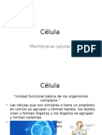 Célula (Presentación)