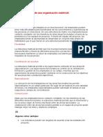 Ventajas Del Uso de Una Organización Matricial ( Raul R Ccorpuna Leon) (1)