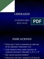 Lead Cuestionario