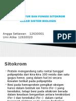Struktur Dan Fungsi Sitokrom Dalam Sistem Biologis Aa