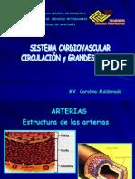 Circulatorio II MODIFICADO 26-05-2008