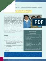 10- Lineamiento 2 Inclusión, Permanencia y Culminación de La Educación Básica de Calidad