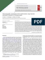 Ultrasonographic Examination of the Small Intestine, Large Intestine