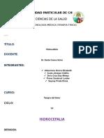 HIDROCEFALIA (1)